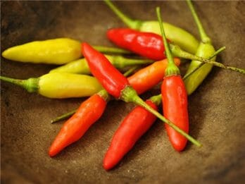 cayenne pepper replacement