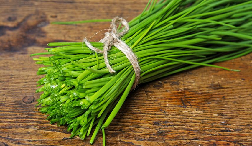 what are chives